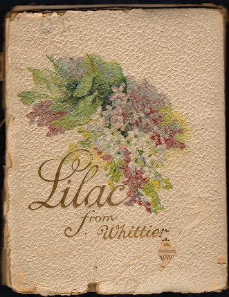 Image for Lilac